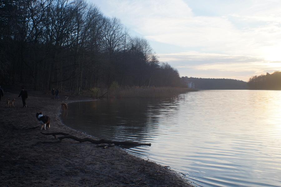 グルーネヴァルト湖_c0180686_14123211.jpg
