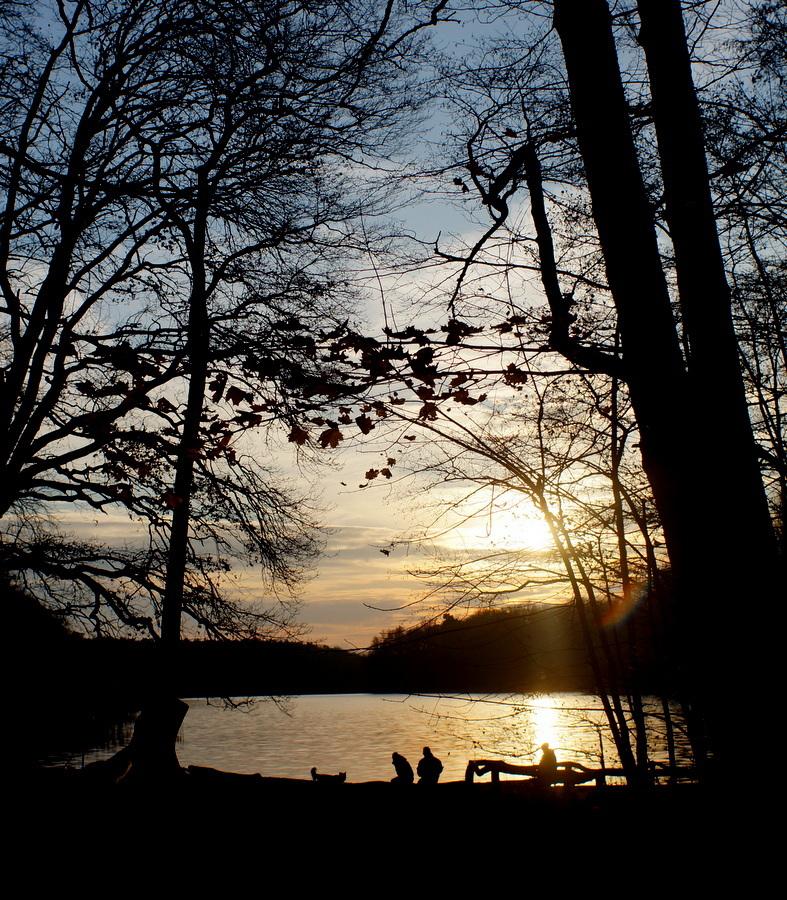 グルーネヴァルト湖_c0180686_14133139.jpg