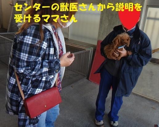 f0121712_00115204.jpg