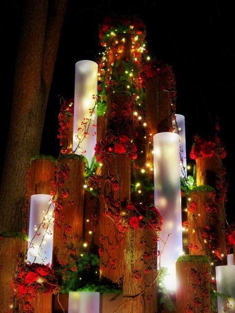 軽井沢高原教会*クリスマスキャンドルナイト・2017~光の十字路_f0236260_00435625.jpg