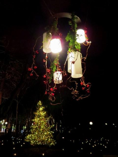 軽井沢高原教会*クリスマスキャンドルナイト・2017~光の十字路_f0236260_00542099.jpg