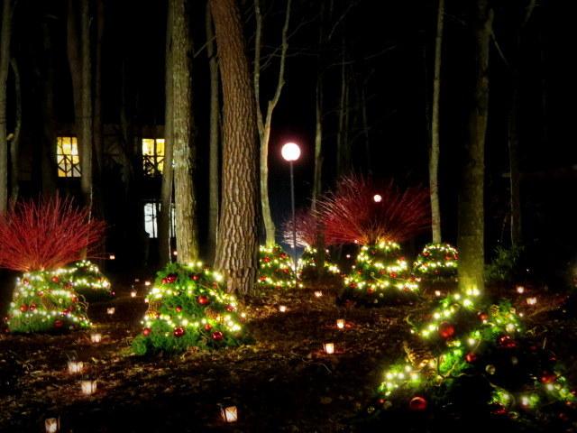 軽井沢高原教会*クリスマスキャンドルナイト・2017~光の十字路_f0236260_00553486.jpg