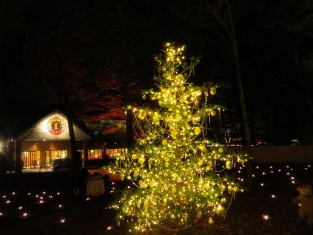 軽井沢高原教会*クリスマスキャンドルナイト・2017~光の十字路_f0236260_00572413.jpg