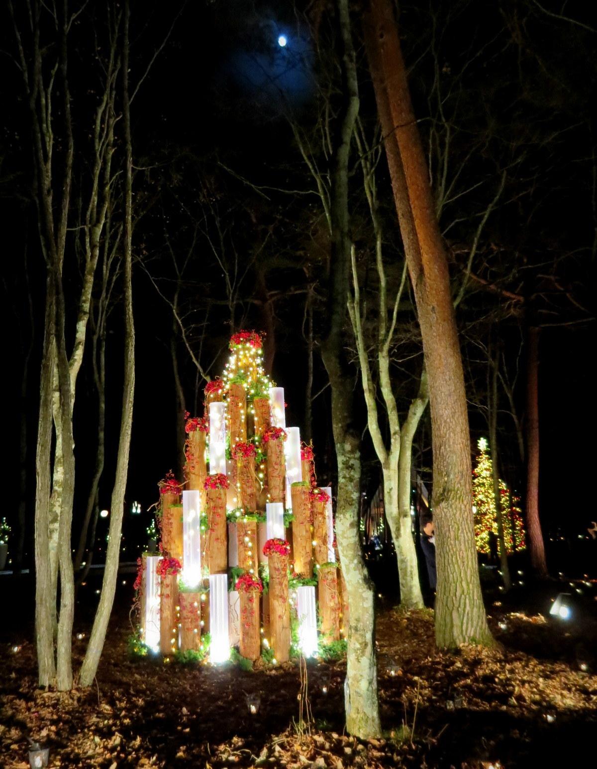 軽井沢高原教会*クリスマスキャンドルナイト・2017~光の十字路_f0236260_01080160.jpg