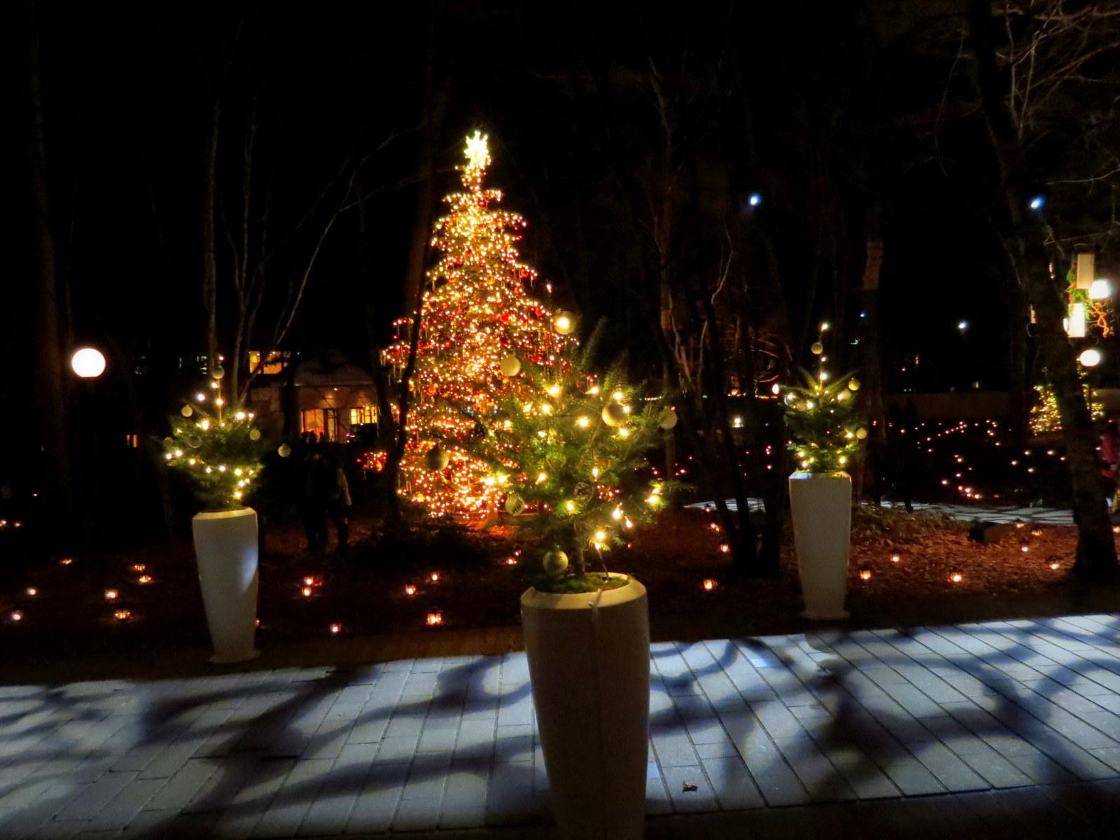 軽井沢高原教会*クリスマスキャンドルナイト・2017~光の十字路_f0236260_01083312.jpg