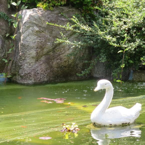 蔵出し 夏の山口紀行のその2 宇部新川と黄色と我慢 _c0001670_21041995.jpg