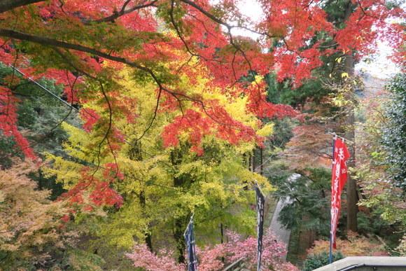 北鎌倉から鎌倉を歩く_e0234741_16105183.jpg