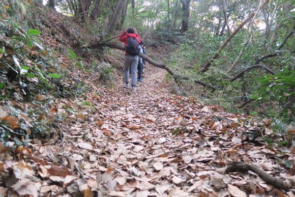 北鎌倉から鎌倉を歩く_e0234741_16124815.jpg
