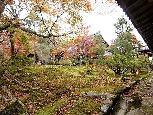 藤田八束の鉄道写真@京都の秋・・・天龍寺を訪ねて、冠雪した青森の霊峰岩木山_d0181492_08300378.jpg