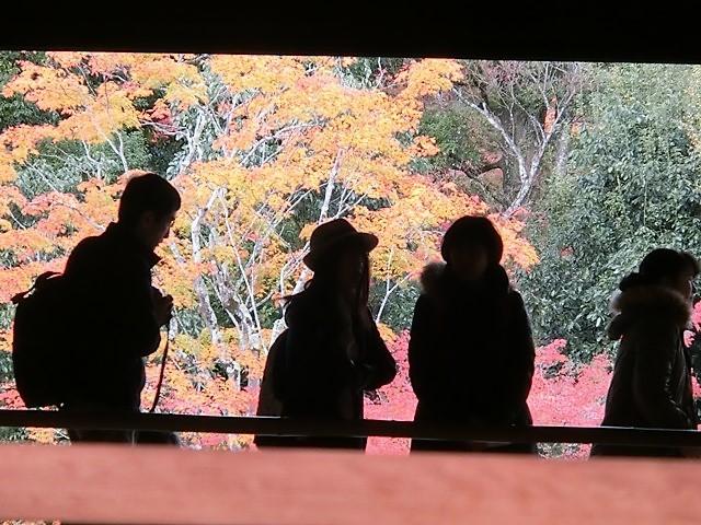 藤田八束の鉄道写真@藤田八束が最近撮った写真をご紹介・・・京都、鹿児島、宮崎、そして北海道_d0181492_08384918.jpg