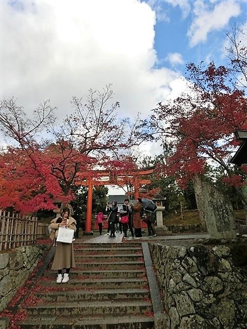藤田八束の鉄道写真@京都の秋・・・天龍寺を訪ねて、冠雪した青森の霊峰岩木山_d0181492_08390483.jpg