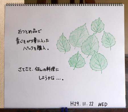 あおじそ_b0364195_13581617.jpg