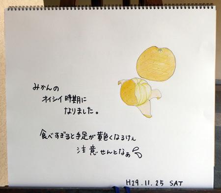 みかん_b0364195_14000322.jpg