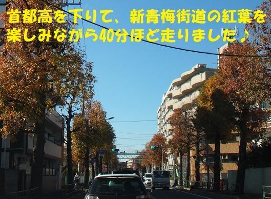 f0121712_12545802.jpg