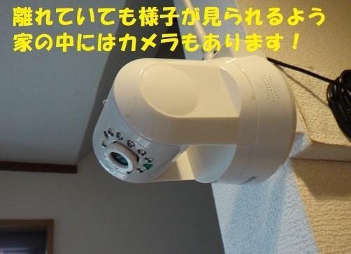 f0121712_13445535.jpg