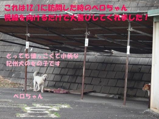 f0121712_14271778.jpg