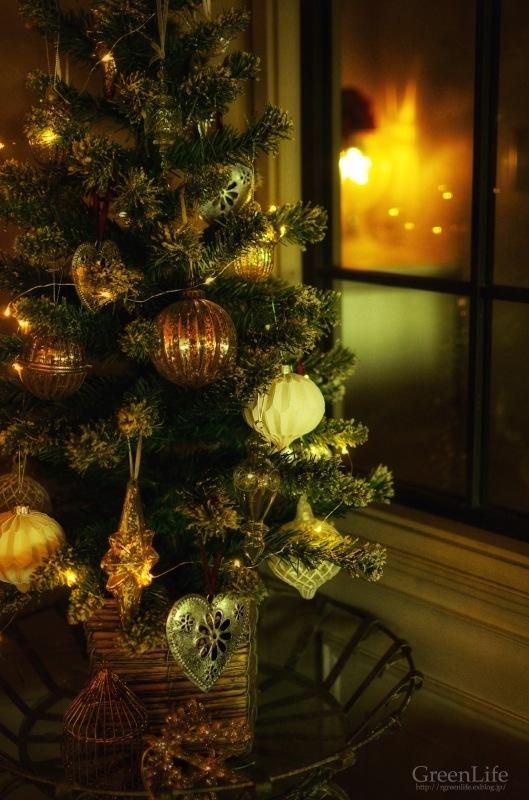 クリスマスの準備_f0321522_08343831.jpg