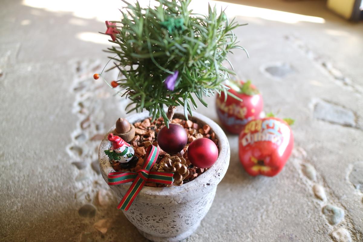 12月の営業日と休日のお知らせ_a0077025_15395490.jpg