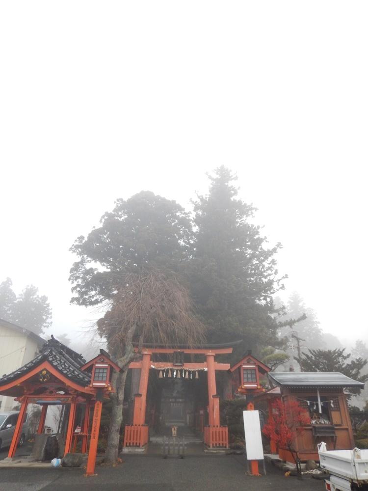 本日も樹木の切り詰め作業_c0111229_20570626.jpg