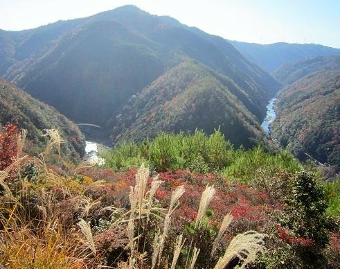 今年も行ってきました嵐山~♪_b0177436_09165785.jpg