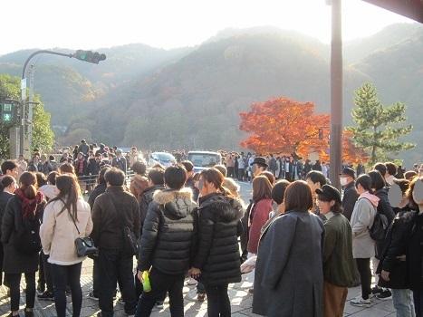 今年も行ってきました嵐山~♪_b0177436_09181942.jpg
