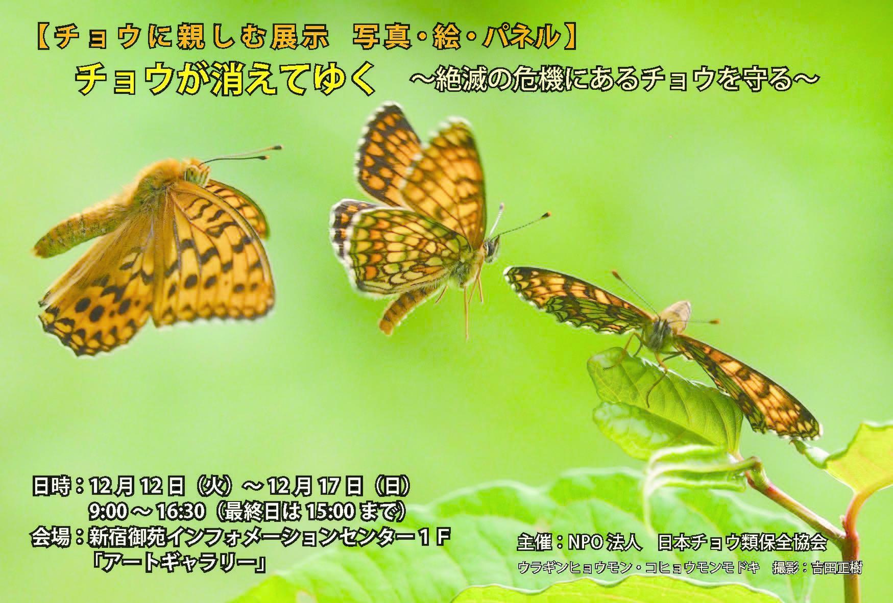 祝図鑑掲載と保全協会の展示会案内_a0146869_05155262.jpg