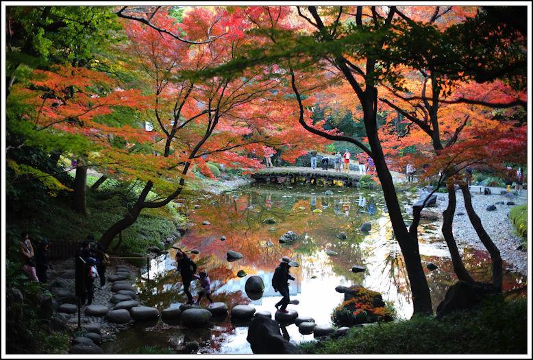 小石川後楽園 -20_b0340572_20493100.jpg