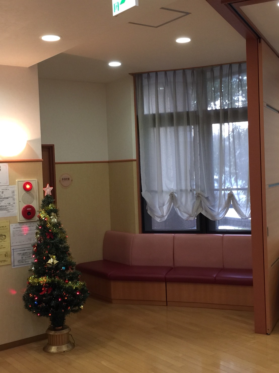 そろそろクリスマス・・・_b0251421_855897.jpg