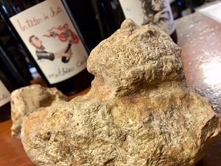 「猫の頭」の形をした石を持ってマチューさんが来てくれました_a0254125_15565982.jpg