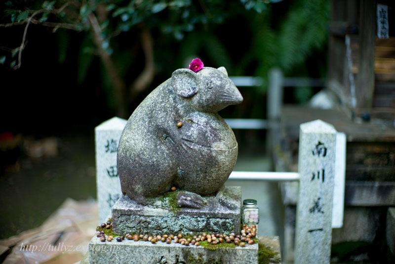 京都錦秋(23)_d0108132_18395424.jpg