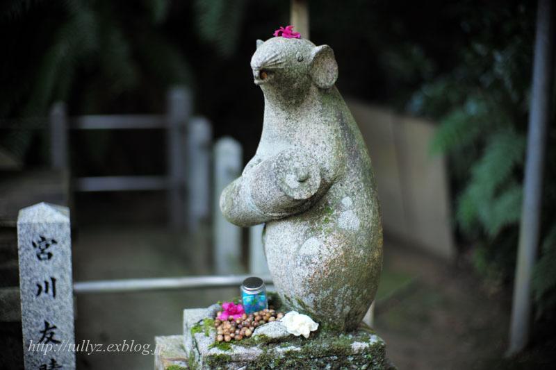 京都錦秋(23)_d0108132_18395472.jpg