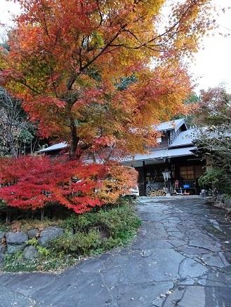 紅葉眺めながらの・・鉢の木・阿佐ヶ谷本店の最中。_f0177373_19255759.jpg