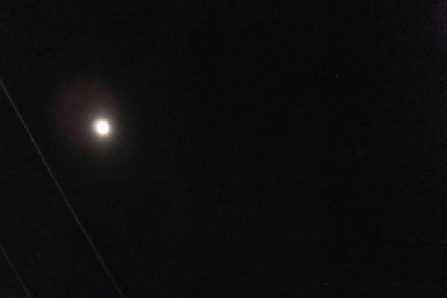夜散歩_c0201876_10495087.jpg