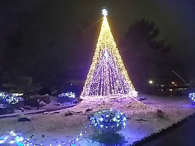 クリスマスイルミ&マカロニサラダ粒マスタード味_f0019498_21151400.jpg