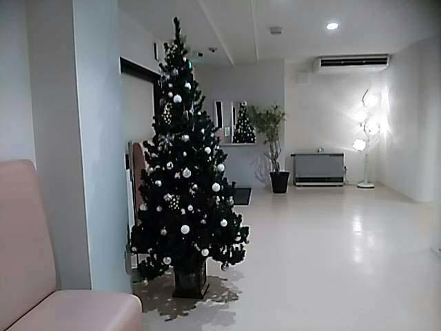 クリスマスイルミ&マカロニサラダ粒マスタード味_f0019498_21154654.jpg