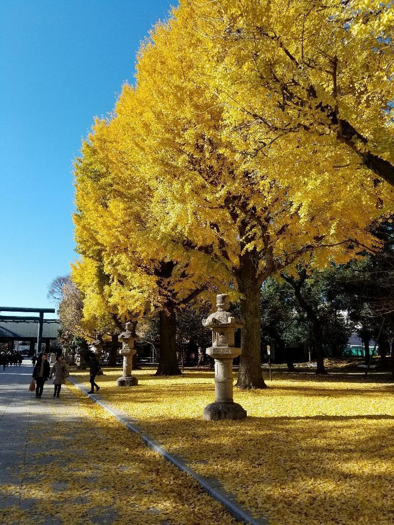 靖国神社にて_b0019313_15313936.jpg