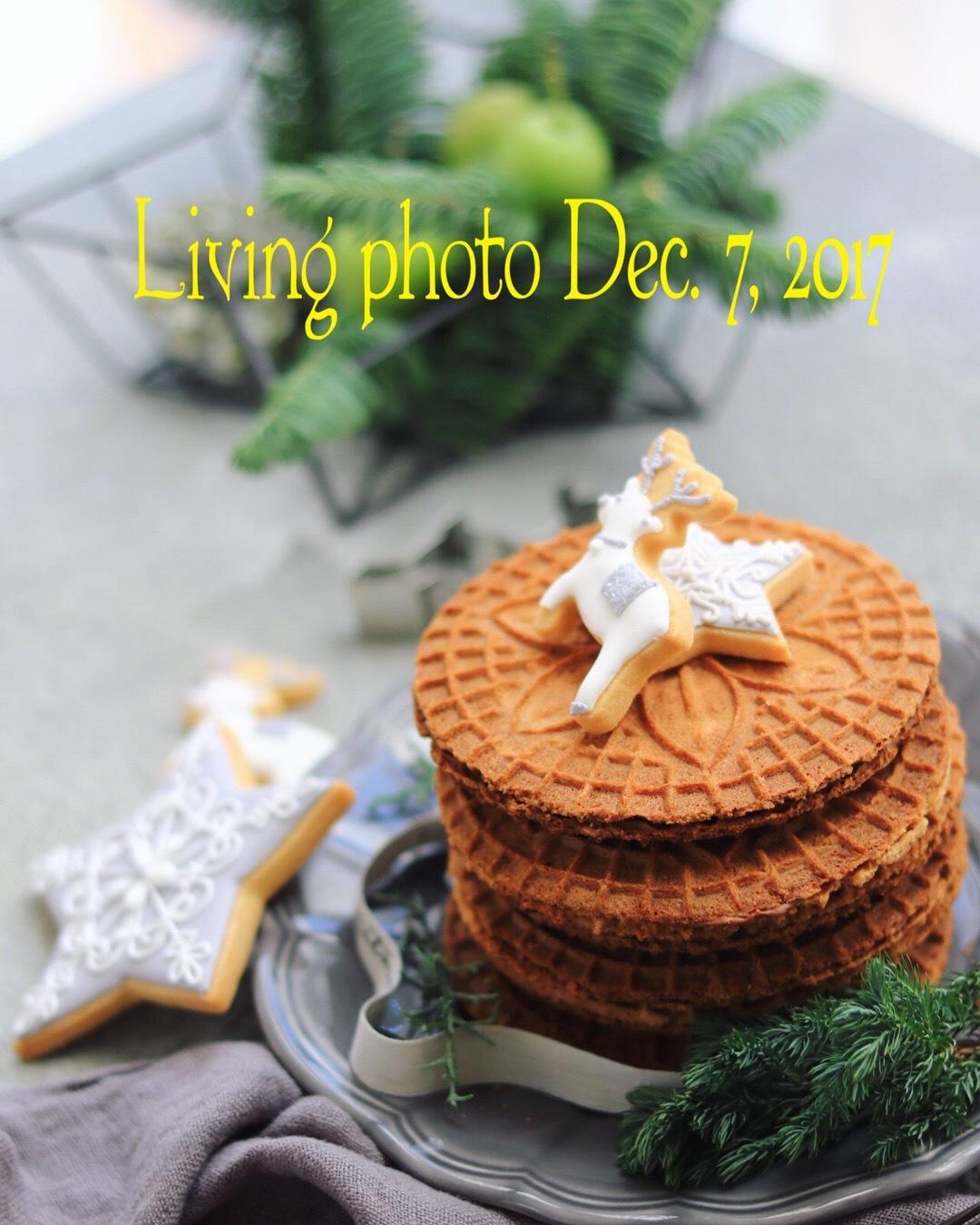 living photo 教室 7,December,2017_c0366722_17401609.jpeg