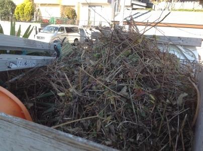 庭木伐採、剪定_c0186441_18081111.jpg