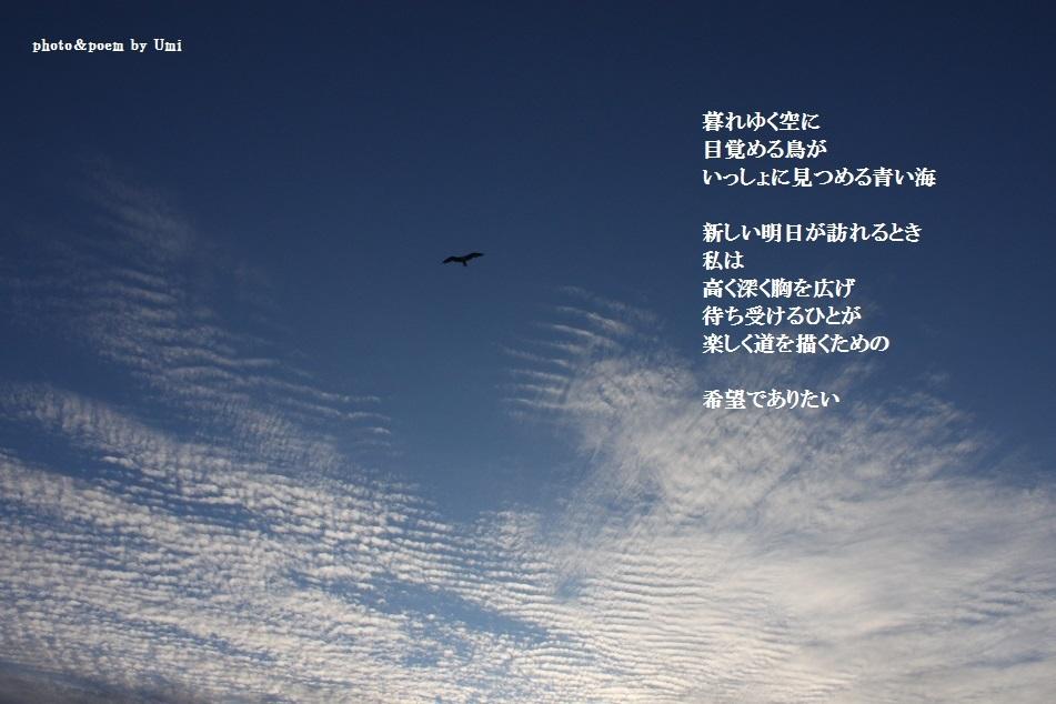 f0351844_16500155.jpg