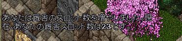 b0022669_1274631.jpg