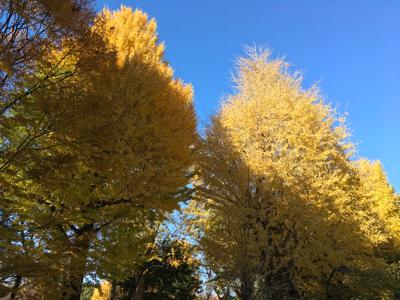上野散歩_a0001971_03354267.jpg