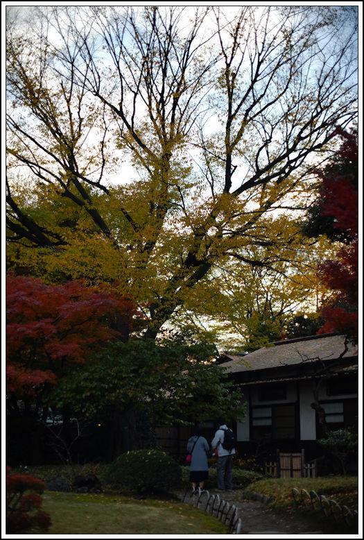 小石川後楽園 -21_b0340572_21005483.jpg