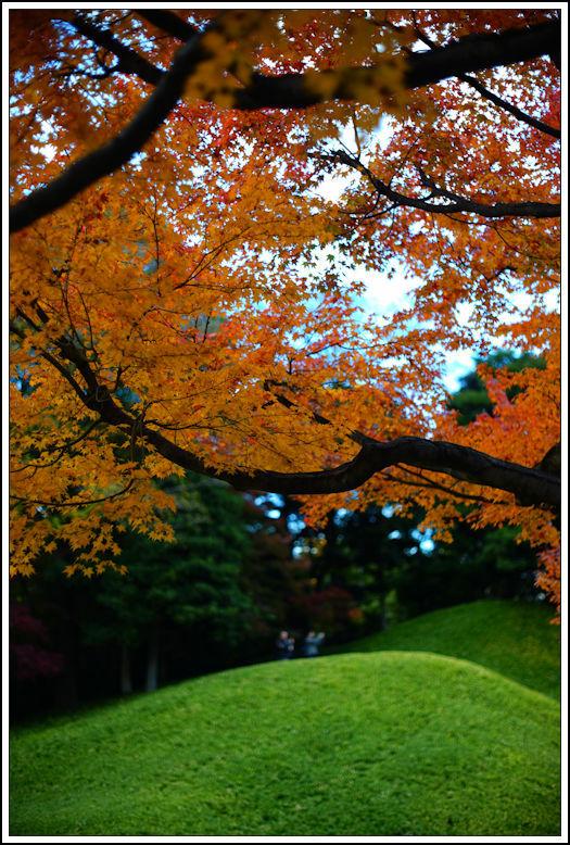 小石川後楽園 -21_b0340572_21010612.jpg