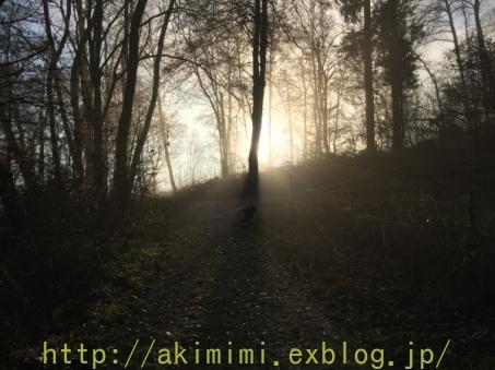 b0245488_23484793.jpg