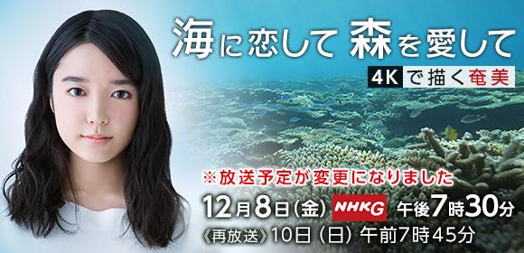 12/8 NHK 海に恋して森を愛して 放送_a0010095_18463183.jpg