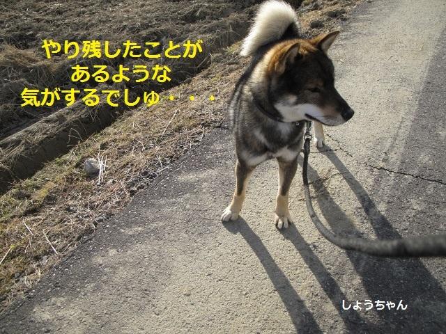f0143123_10044418.jpg