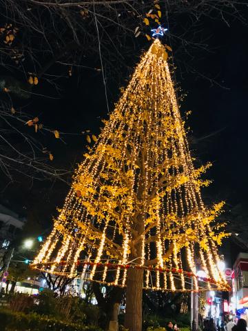 「おしゃれマーケット 2017 winter」_a0153945_15252696.jpg