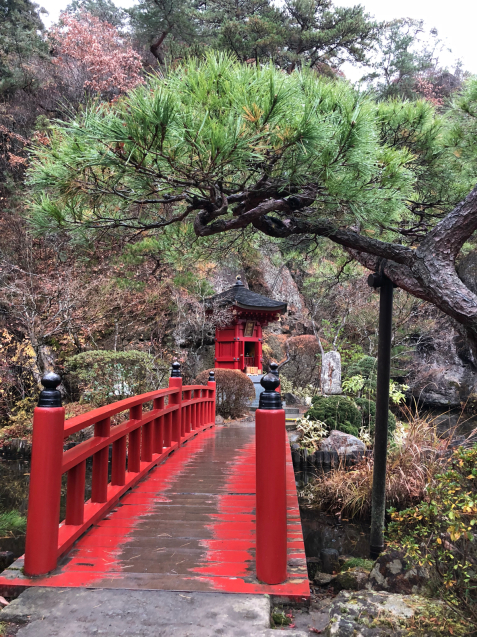 栃木散策 ①_f0144003_11224417.jpg