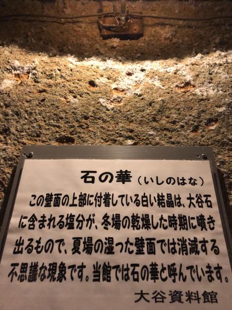 栃木散策 ②_f0144003_11321805.jpg
