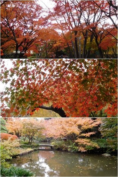 池田山界隈ウォーキング&お友達のコーラス_c0051105_22475810.jpg